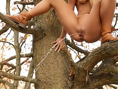 Piss in tree